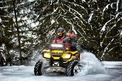Raza del invierno en un ATV en nieve en el bosque Imagenes de archivo