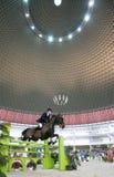 Raza del montar a caballo Fotografía de archivo