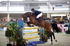 Raza del montar a caballo Imagen de archivo