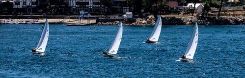 Raza del velero del verano en la punta de flecha del lago, California imagen de archivo libre de regalías