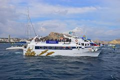 Raza espectadora Alicante 2017 del océano de Volvo del barco fotografía de archivo libre de regalías