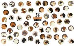 58 razas de bastidor redondo aislado perros de los objetos Imagen de archivo