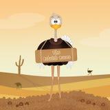 Razas de la avestruz ilustración del vector