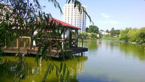 Razelm湖 免版税图库摄影
