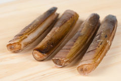 Razor clams Stock Photos