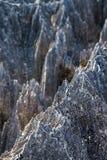 Razor sharp Tsingy Stock Photography
