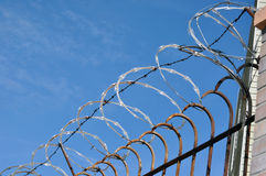 Razor Sharp Wire. Fence for Protection Stock Photography