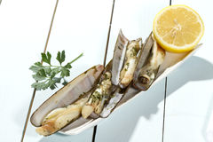 razor shell grilled Stock Photos
