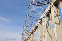 Razor Wire. On Security Fence Royalty Free Stock Image