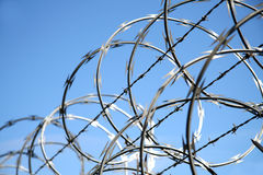 Razor wire. Detail of razor wire on a fence Royalty Free Stock Image