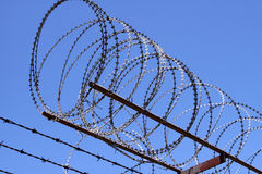 Free Razor Wire Royalty Free Stock Photography - 13204067