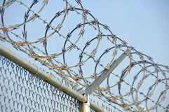 Razor Wire 2. Razor wire on security fence Royalty Free Stock Image