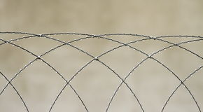 Razor Wire Stock Image