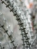 Razor wire. Close up of razor wire with short depth of field royalty free stock images