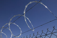 Razor wire. Barbed wire and razor wire on fence with clear blue sky Stock Images