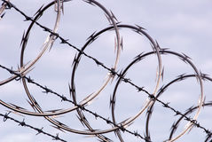 Free Razor Wire Royalty Free Stock Photography - 8252157