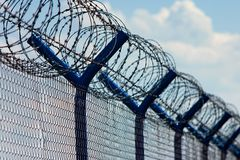 Razor Wire Above a Fence Stock Image