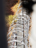 Razor wire fence. Chain link fence with razor wire. From between the walls Stock Images
