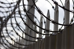 Free Razor Wire Fence Royalty Free Stock Images - 62738769