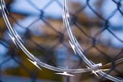 Razor Wire and Fence Background Stock Images