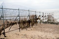 Razor wire fence. On the edge of an army firing range Stock Image
