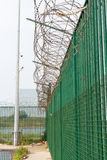 Razor wire on top of green fence guarding French ferry terminal. Stock Photo