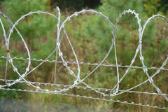 Razor wire topping a security fence. Stock Image