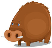 Razorback. Illustration of isolated  cartoon wild pig on white background Royalty Free Stock Photo
