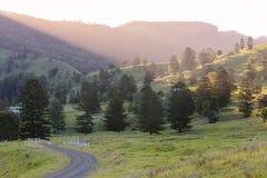 Razorback di Mt Fotografia Stock Libera da Diritti