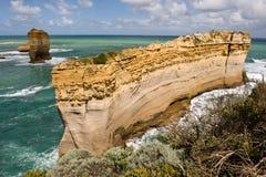 Razorback in Haven Campbell in Victoria, Australië Royalty-vrije Stock Foto