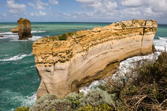 Razorback in Port Campbell in Victoria, Australia Royalty Free Stock Photo