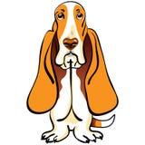 Razza del segugio di bassotto del cane del fumetto Fotografia Stock
