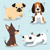 Razza sveglia dei cani Immagini Stock Libere da Diritti