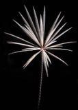 Razzo dei fuochi d'artificio Fotografia Stock Libera da Diritti