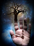 Árbol con la mano Imágenes de archivo libres de regalías