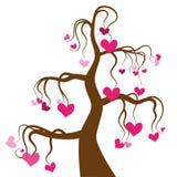 Árbol de amor Imágenes de archivo libres de regalías