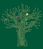 Árbol de la placa madre Fotos de archivo libres de regalías
