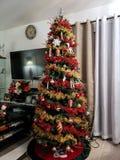 ?rbol de navidad foto de archivo libre de regalías