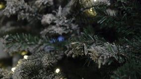?rbol de navidad con las luces almacen de video