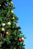 Árbol de navidad verde con la bola Fotos de archivo
