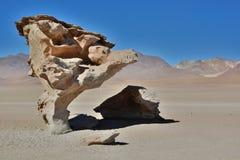 Rbol de Piedra  à Пустыня Siloli Отдел Potosà bolivians Стоковая Фотография RF