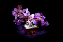Árbol de piedra Imágenes de archivo libres de regalías