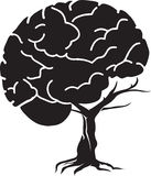 Árbol del cerebro Fotografía de archivo