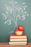 Árbol del conocimiento Foto de archivo libre de regalías