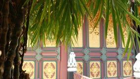 ?rbol del jard?n cerca del edificio oriental del templo ?rbol de bamb? ex?tico que crece cerca del edificio ornamental tradiciona metrajes