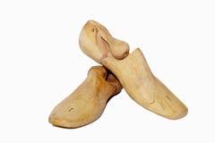 Árbol del zapato Imagen de archivo libre de regalías