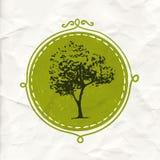 Árbol dibujado mano en insignia del círculo Etiqueta amistosa y orgánica de Eco del producto Emblema de la naturaleza del vector Foto de archivo libre de regalías