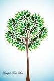 Árbol natural Imágenes de archivo libres de regalías