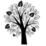 ?rbol negro hermoso con las hojas en el fondo blanco ilustración del vector