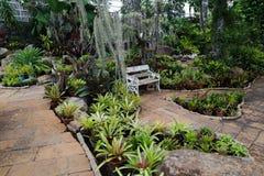 ?rbol, plantas, piedra del bosque y flores verdes hermosos en los jardines al aire libre y los parques p?blicos fotografía de archivo